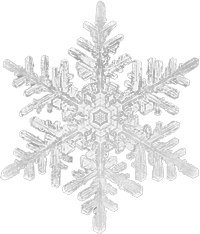 Snowflake200