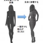 体のゆがみを改善するシンプルな法則!!ゆがませる体の使い方は、 ねじって縮めるだった!!