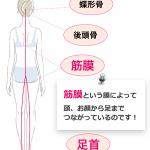 【シンメトリーeye】お顔の歪みを整えたら「O脚が改善しちゃった!」