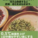 【号外】 0.5℃体温上げ1日中痩せやすい体にする自宅でできる5つのセルフケア